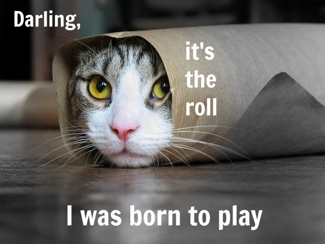 Dramatic Cat has found her role of a lifetime, courtesy of a penchant for puns.