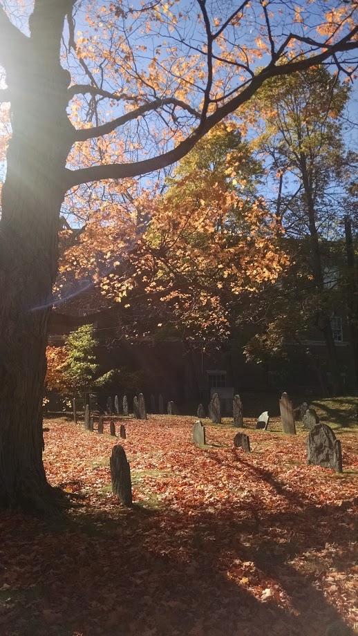 Graveyard, Arlington MA, October 2015. Photo by Meg Winikates
